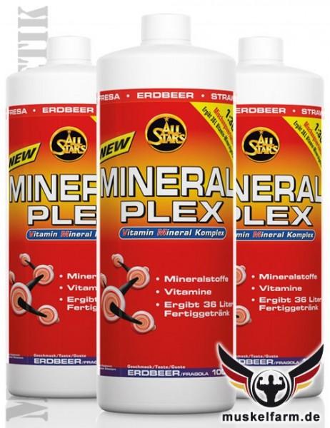 All Stars Mineral Plex + L-Carnitin